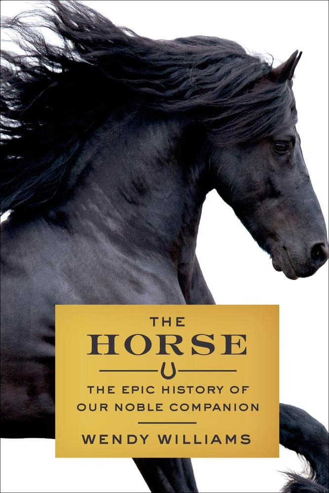 The unique relationship between humans and horses through the centuries.