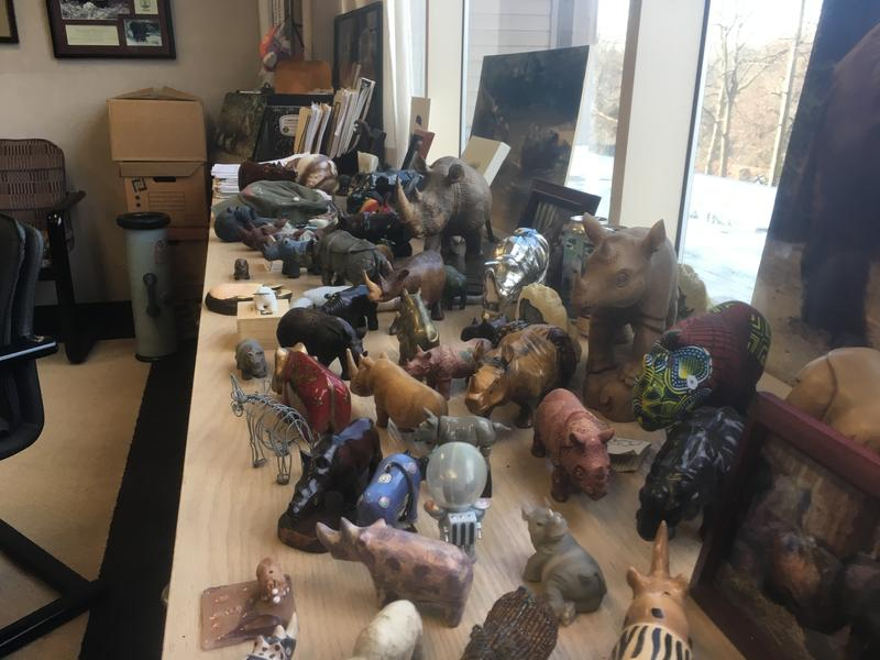 Terri Roth's rhino collection. The Cincinnati Zoo researcher is key in the birth of three Sumatran rhinos at the zoo. She is now studying Dr. Herman Mays' DNA sequencing of Ipuh, a rhino who lived at the Cincinnati Zoo.