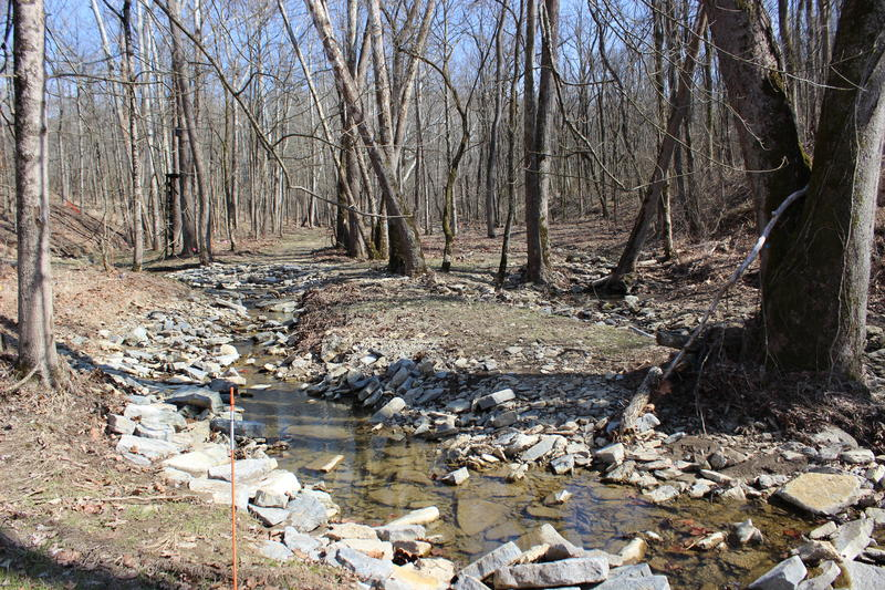 The stream during restoration in March 2018.