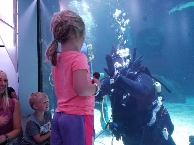 Bruno Lanman hands out high-fives from inside the Newport Aquarium's shark tank in Covington, KY.