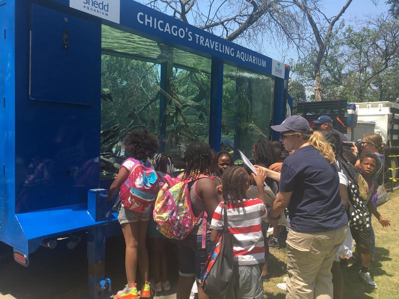 Children crowd around a mobile aquarium that's on loan to Shedd Aquarium for the summer.