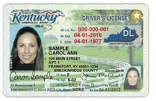 kentucky driver's license