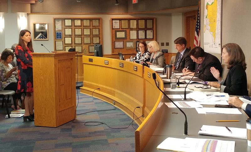 Commissioner Denise Driehaus (far right) makes a case for an additional property tax levy for children's services.
