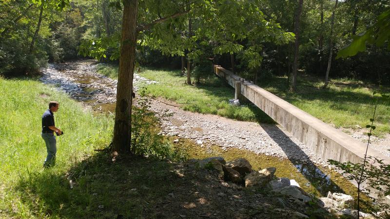 John McManus surveys the stream and a concrete beam that contains sewage lines.