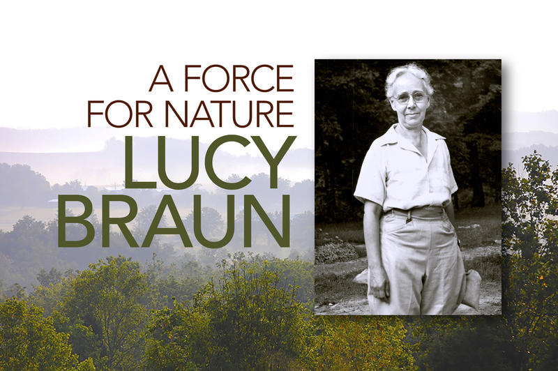 Graphic for 'A Force For Nature: Lucy Braun,' airing Oct. 7 on WCET-TV.