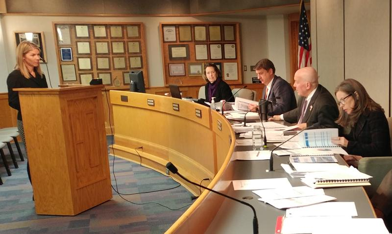 MSD Director Diana Christy (left) presents the proposed 2019 budget to commissioners.