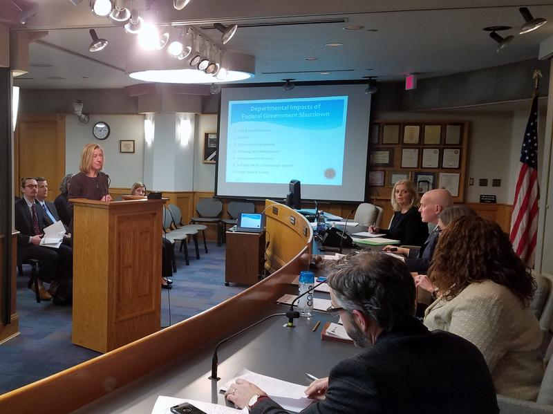 JFS Director Moira Weir speaks before the Hamilton County Board of Commissioners about the effects of the partial government shutdown.