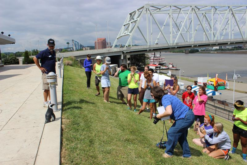 Artists and artist apprentices take pictures of Paula standing in front of the mural they're working on.