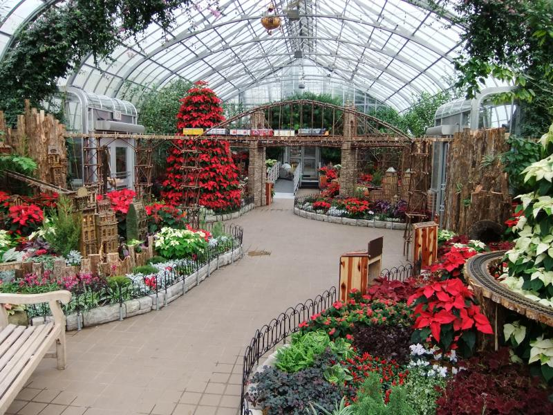 The annual display has become a holiday tradition for many Cincinnatians.