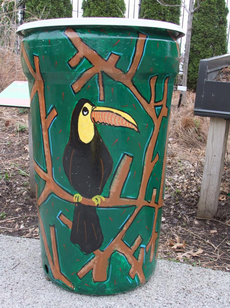 Toucan's like rain barrels.