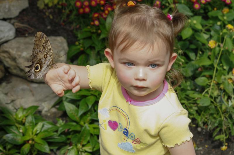 Angelia Snellgrove was not quite sure what to do with her butterfly but she did enjoy having it on her arm.