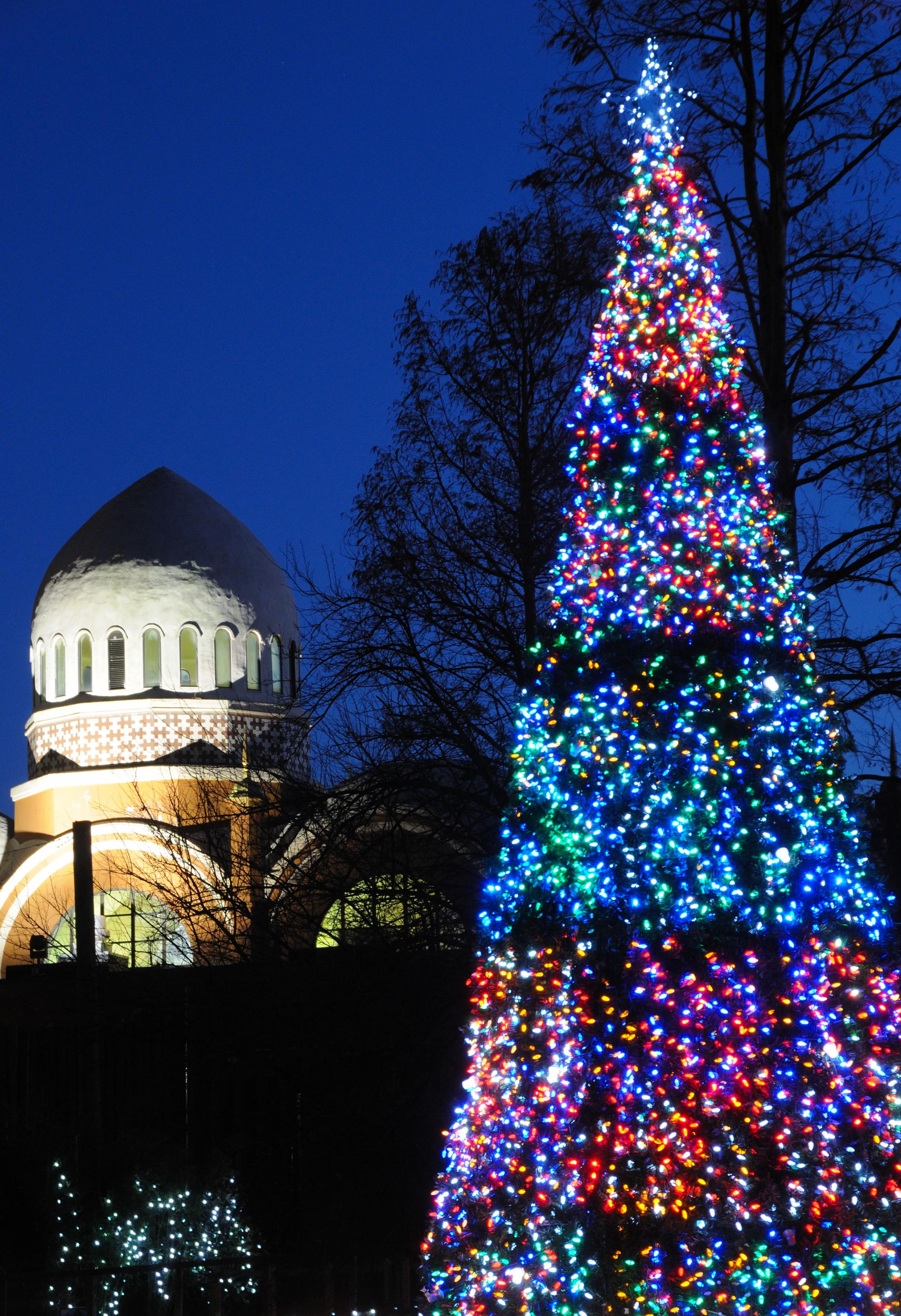 the main showcase at the cincinnati zoo a light show takes place on swan view slideshow 2 of 3