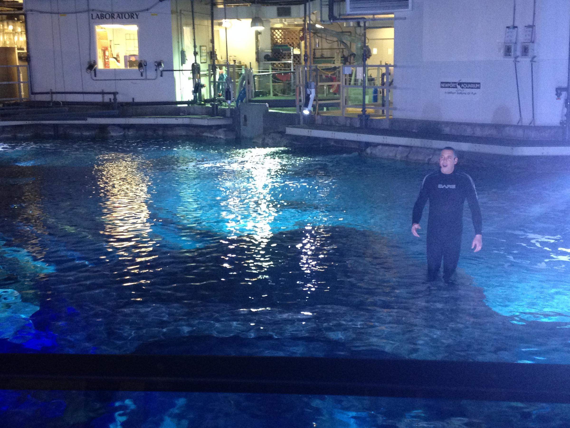 Brave Enough For Newport Aquarium 39 S Shark Bridge Wvxu