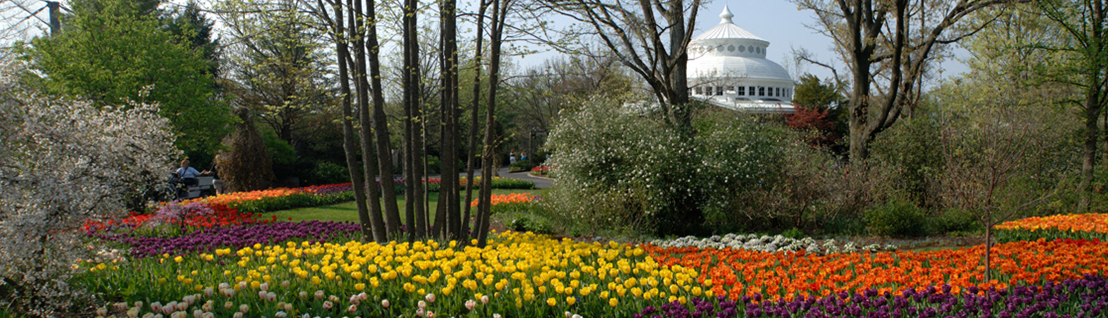 Good Plant Trial Days Coming Up At The Cincinnati Zoo And Botanical Garden
