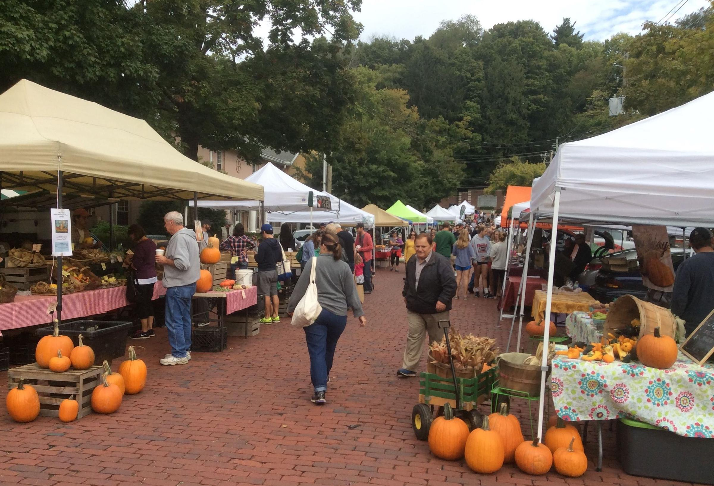 Fall Gardening Ideas Part - 40: Cool Weather Gardens, Farmers Markets, U0026 More Fall Gardening Ideas And  Answers