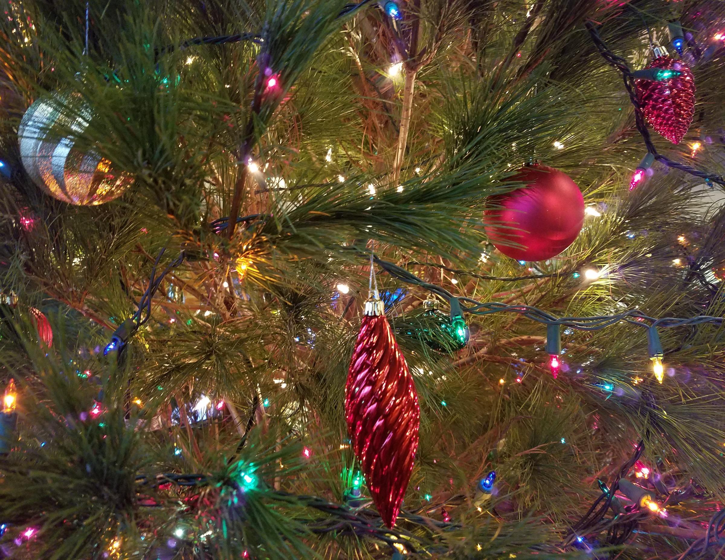 O Christmas Tree, It\'s Time To Go   WVXU