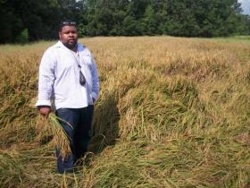 Culinary historian Michael Twitty harvests rice in South Carolina. Twitty talks about exploring his ancestry on The Southern Discomfort Tour.