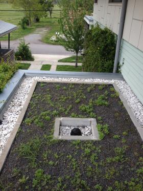 Roof gardens help lessen the effects of the urban heat island.