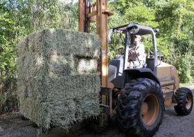 The daily hay shipment for the zoo's four rhinos.