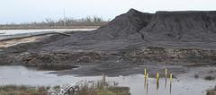 Coal spreads into wetland areas at the Kinder Morgan
