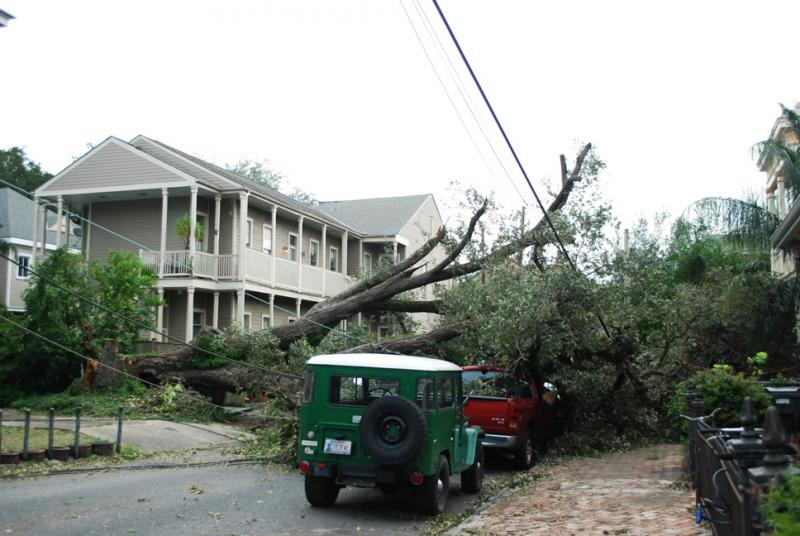 Hurricane Isaac brought down trees and power lines around New Orleans. Cars and a home on Coliseum St. were damaged by a felled tree in the Lower Garden District.