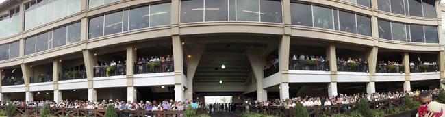 A panorama of the paddock area.