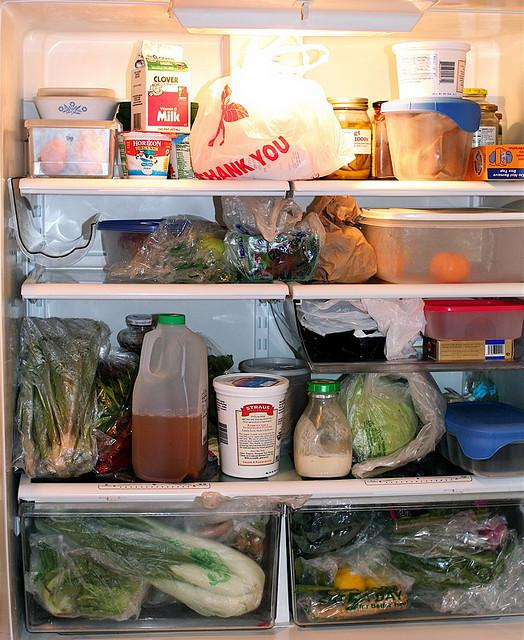 Losing things in the back of the fridge is easy when you live with roomates...
