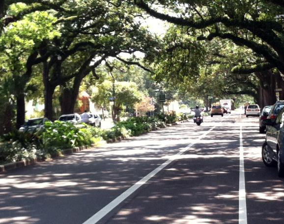 The newly-repaved Esplanade Ave. As part of the street's reconstruction, a lane in each direction was eliminated and a bike lane added.
