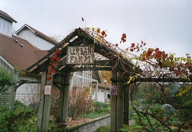 Urban Farms are gaining traction in NOLA and other cities world-wide.