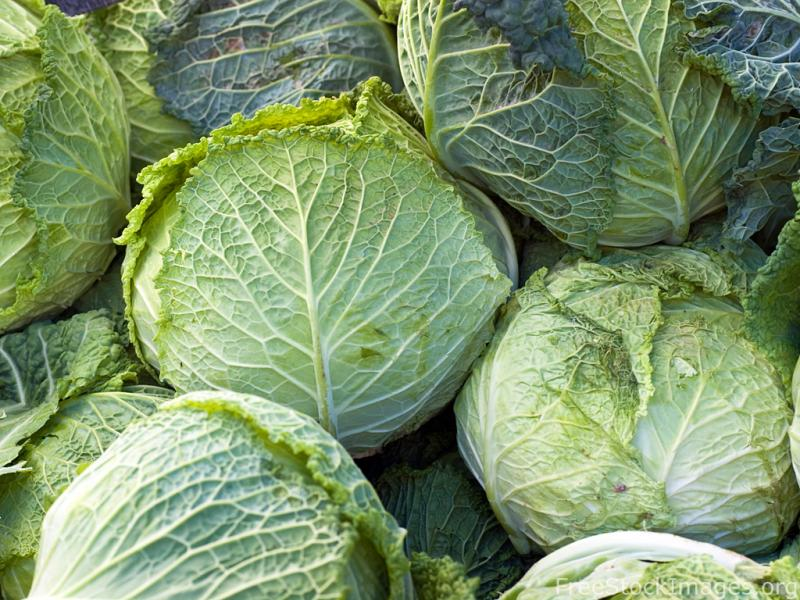 Cabbages — and carrots, and potatoes, and onions — will deck parade floats this weekend.