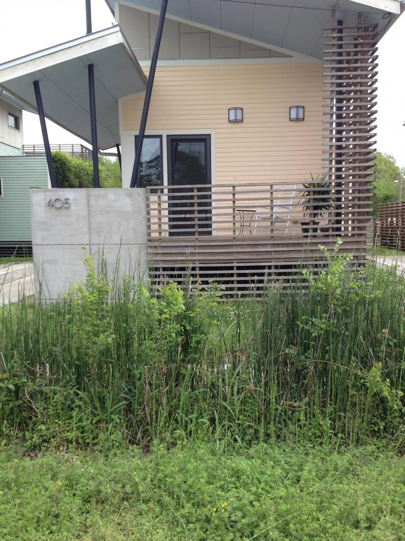 Each of the five homes in Global Green's Sustainable Village has a rain garden in the front.