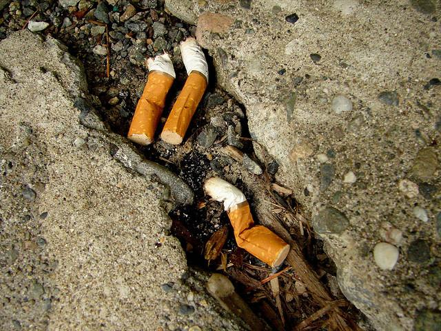Gov. Bobby Jindal has signed into law a bill that labels cigarette butts as litter. A first-offense carries a $300 fine.