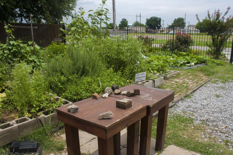 The Backyard Gardeners Network in the Lower 9th Ward helps turn vacant lots into community gardens.
