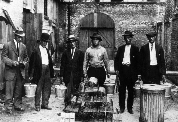 Workers display rat-trapping equipment in New Orleans, circa 1914.