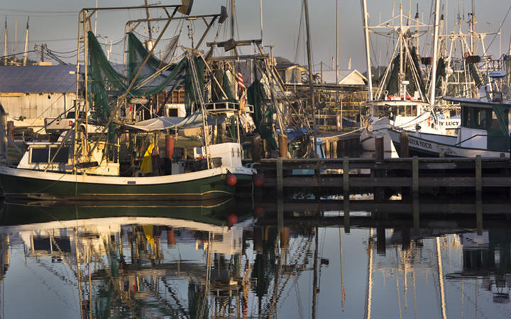 Shrimp boats in Delcambre, Louisiana, where customers can buy seafood from the dock through Delcambre Direct Seafood