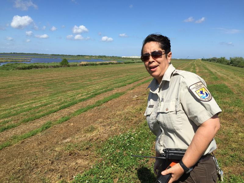 Shelley Stiaes, Refuge Operations Specialist, Southeast Louisiana NWR Complex.