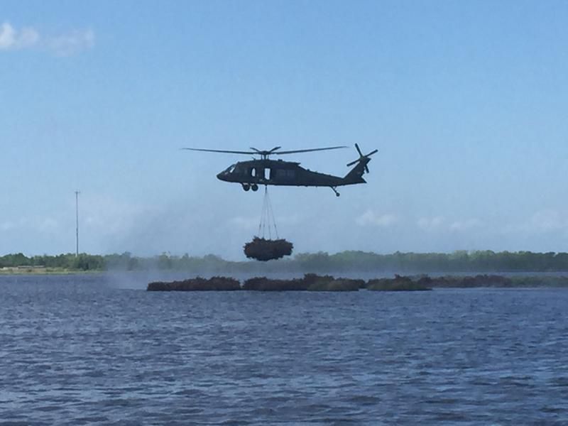 The black hawk hovers right above the new line of defense before dropping the next bundle of trees into the marsh.