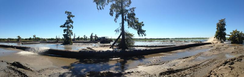 A marsh restoration project at work.