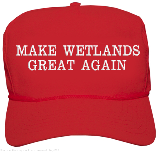 Make Wetlands Great Again
