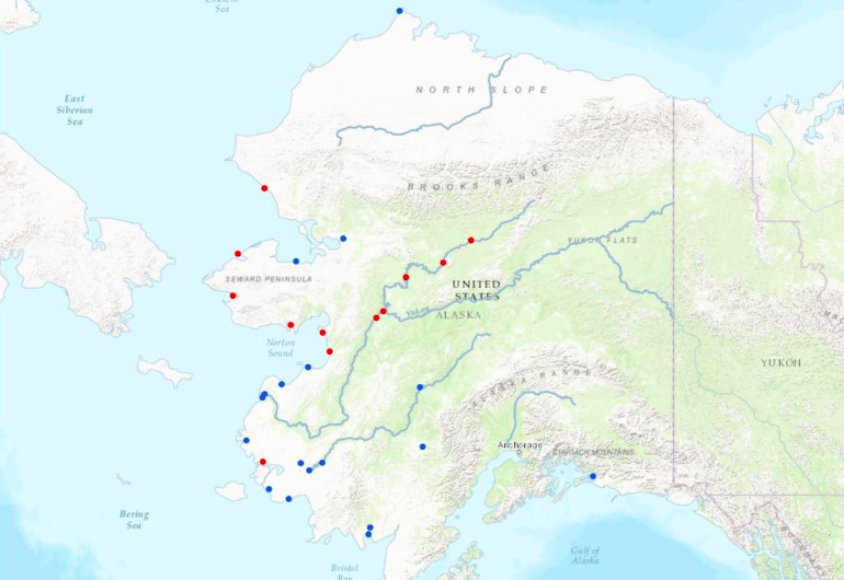 This map shows the location of Alaska Native Villages. The red dots represent those in the process of climate relocation; the blue, those threatened by imminent climate impacts.