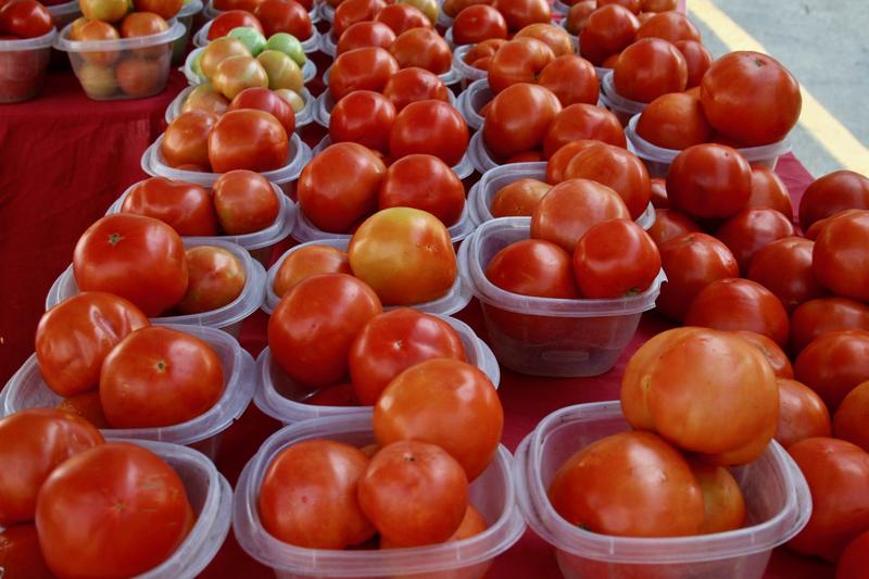 Creole tomatoes arrive in New Orleans as symbol of the season, and a source of local pride.