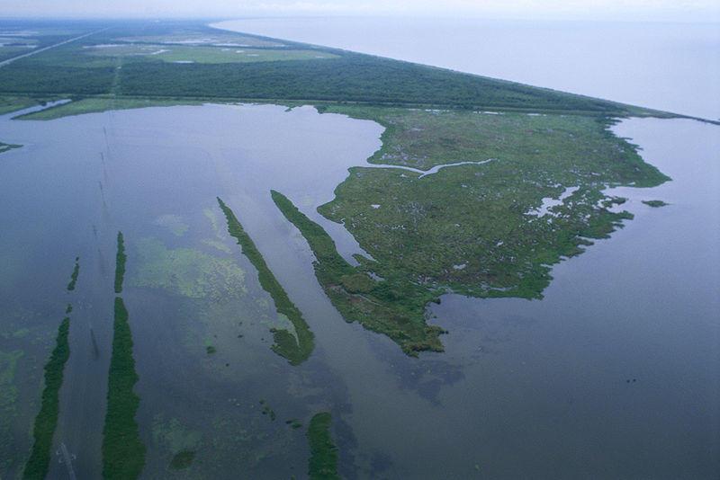 Aerial view of vanishing marsh