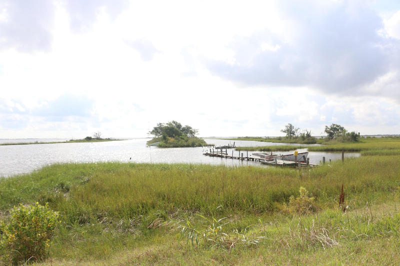 Isle de Jean Charles, from which a Native American community is being relocated, in what is considered the first American relocation of climate refugees