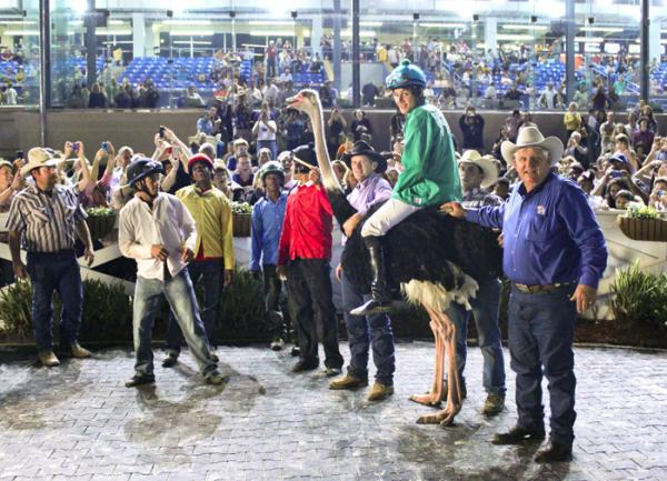 Nom De Plumage and the ostrich jockeys celebrating in the winner's circle after Saturday night's race.