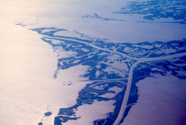 The Mississippi River Delta.