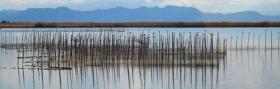 Wisconsin River reservoir