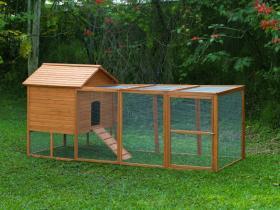 A backyard coop