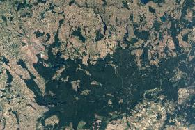 Radeloff looks at satellite images like this one of the Rospuda Valley, Poland.