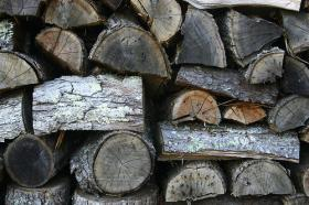 State officials urge hunters to buy local firewood to prevent the spread of invasive pests.