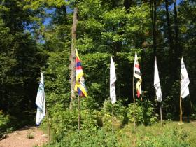 Several flags of supporting tribes stood outside the entrance to the Harvest Camp in summer 2013.